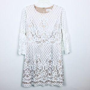 ELIZA J White Lace Overlay Dress  14